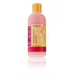 Bálsamo Acondicionador Pomegranate Salerm 200 ml.