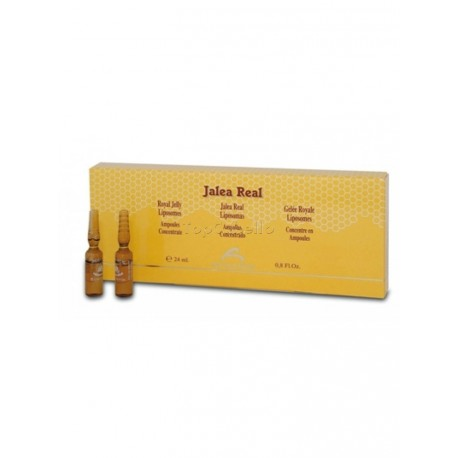 Ampollas Concentrado Jalea Real Bel Shanabel 12x2ml
